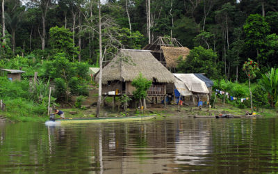 Project to support the preparation and implementation of the Amazonian Strategic Cooperation Agenda