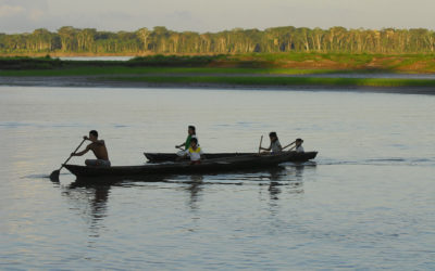 Amazon Project: Regional action in the area of water resources