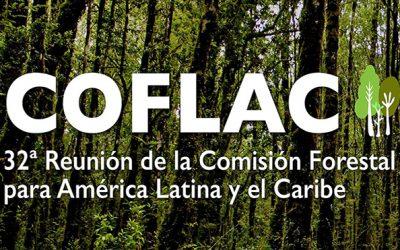OTCA participa como observadora do 32º Encontro da COFLAC