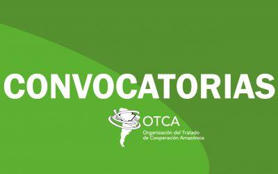 Contratación de consultoría para sistema de información de biodiversidad ORA (BOL)