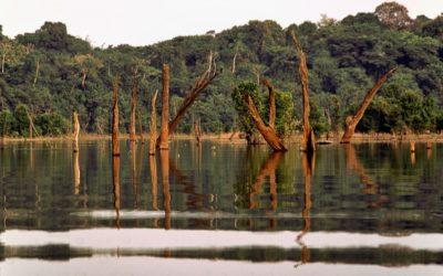 Proyecto Amazonas: Acción Regional en el Área de Recursos Hídrico