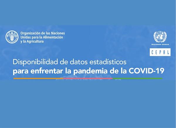 Disponibilidad de datos estadísticos para enfrentar la pandemia de COVID-19