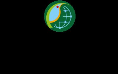 Bioamazonía: está contratando consultoría sub-nodo para sistema de información de biodiversidad del MNHN (BOL)