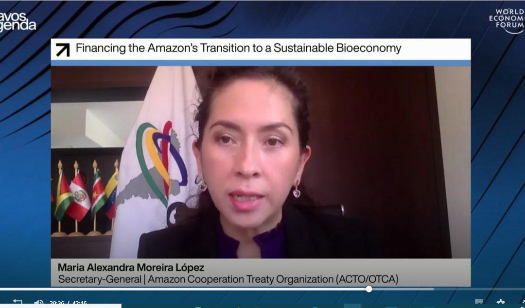 La biodiversidad es uno de los mayores diferenciales para la generación de competitividad en los países amazónicos