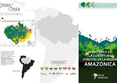 Folleto: Deforestación de la Región Amazónica