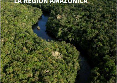 """Informe regional """"sobre la situación de los bosques en la Región Amazónica"""""""
