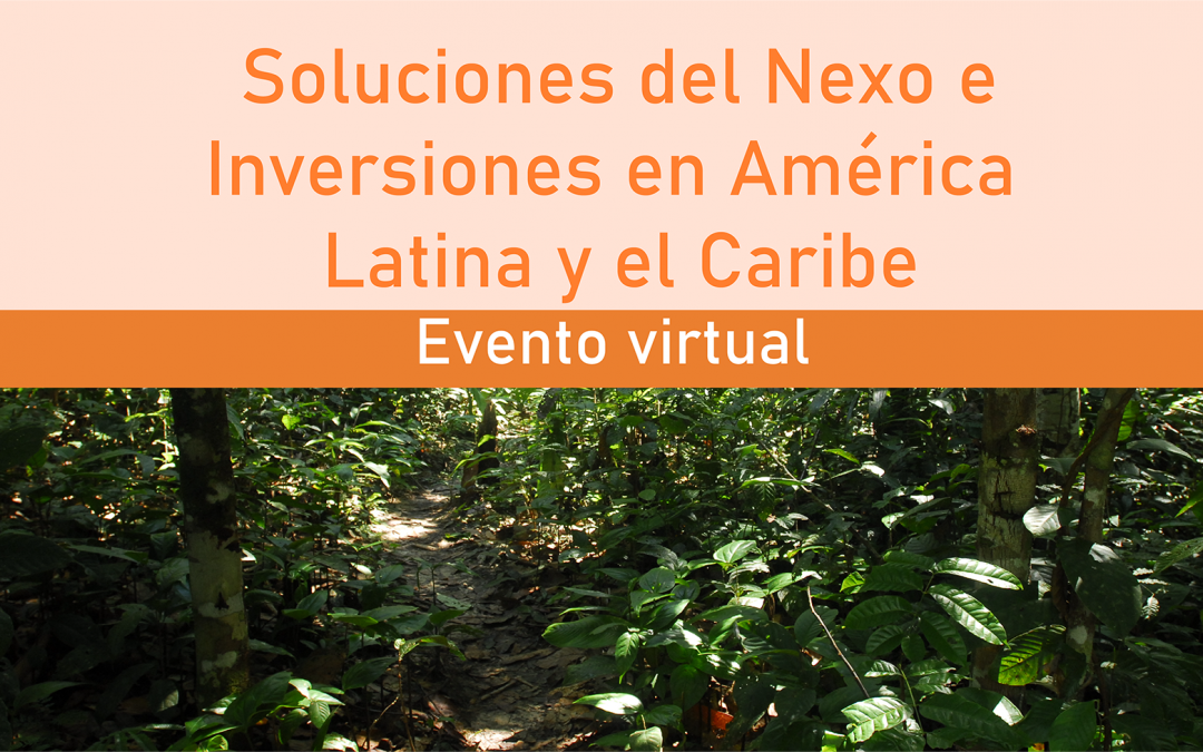 OTCA participa en el evento sobre soluciones del nexo e inversiones en América Latina y el Caribe