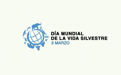 OTCA trabalha com países amazônicos para desenvolver Plano Regional para Cedro
