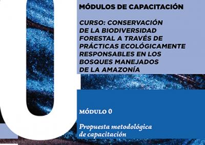 módulo 0 – Propuesta metodológica de capacitación