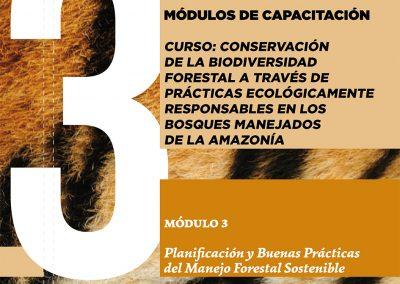 Módulo 3 capacitación _Propuesta metodológica de capacitación