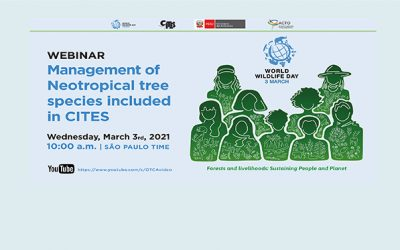 "Amazon Webinar ""Management of Neotropical tree species included in CITES"""