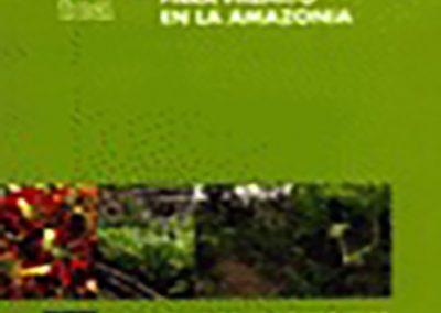 Cultivo del Pijuayo (Bactris gasipaes Kunth) para Palmito en la Amazonía