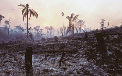 OTCA participa de la segunda reunión del Diálogo EU-LAC sobre Gestión de Incendios Forestales