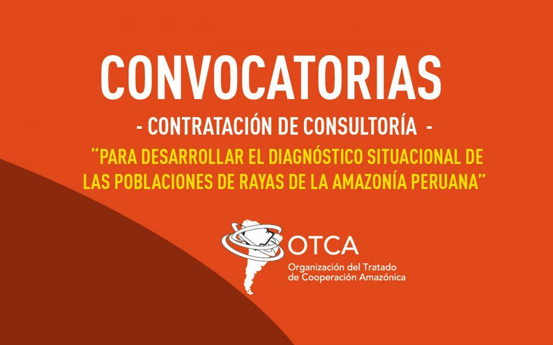 """La OTCA está contratando consultoría para """"Desarrollar el diagnóstico situacional de las poblaciones de rayas de la Amazonía peruana"""""""