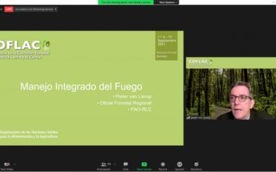 Programa de Bosques para la RegiónAmazónica es presentado en la 32ª Reunión de la COFLAC